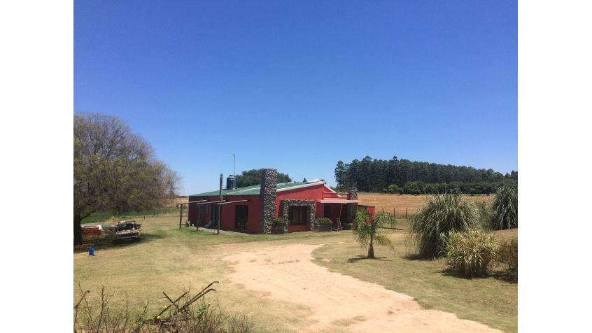 """Imagen 3 Chacra """"El Encandilao"""" Cabaña para vacacionar."""