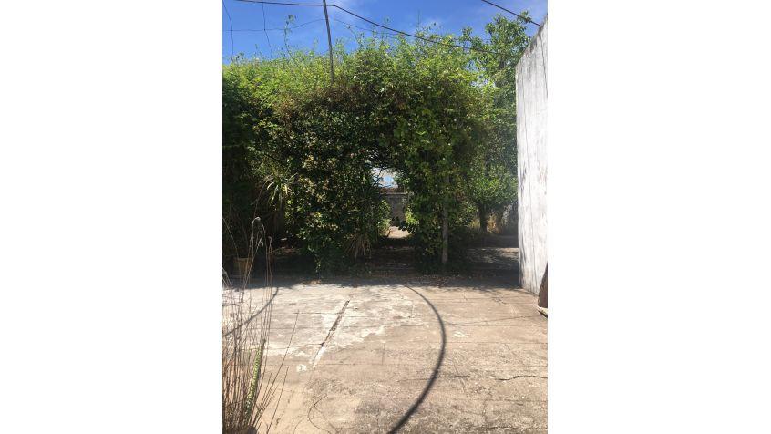 Imagen 19 Alquiler casa de 2 dormitorios y patio.