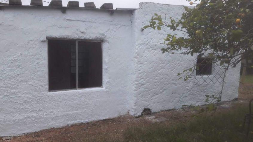 Imagen 5 Casa en alquiler-Fray Bentos.